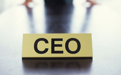 CEO Executive Search Firm   Cowen Partners